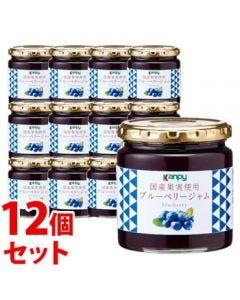 《セット販売》 加藤産業 カンピー 国産果実使用ブルーベリージャム (260g)×12個セット Kanpy