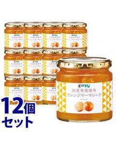 《セット販売》 加藤産業 カンピー 国産果実使用オレンジマーマレード (260g)×12個セット ジャム Kanpy
