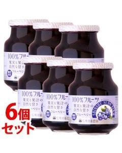 《セット販売》スドージャム信州須藤農園100%フルーツブルーベリー(415g)×6個セット