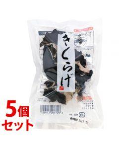 《セット販売》旭フレッシュ中国産きくらげ(20g)×5個セット木耳乾物