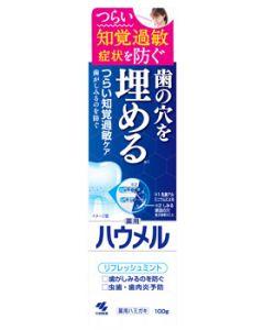 小林製薬ハウメル(100g)薬用ハミガキ知覚過敏口臭予防【医薬部外品】