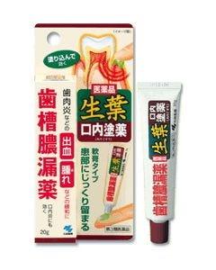 【第3類医薬品】小林製薬 生葉口内塗薬 歯槽膿漏薬 (20g)